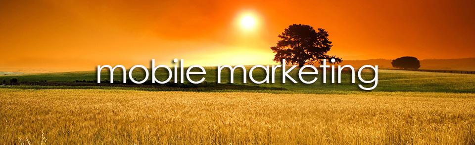 mobile marketing firepoint media